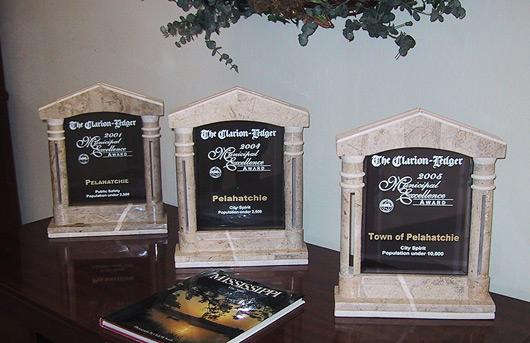Municipal-Excellence-Award
