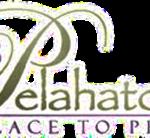 Pelahatchie_logo